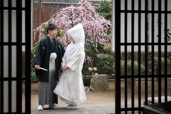 白無垢で桜の前に立たれる新郎新婦さま